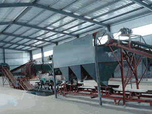 economic small ceramsite bucket conveyer sell in South